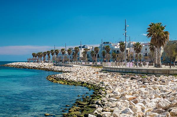 Mola di bari porto peschereccio turistico e sagra del polpo for Citta da visitare in puglia