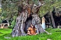 Foto di sesso tantrico tra Naike Rivelli e Yari Carrisi sotto un ulivo in Salento