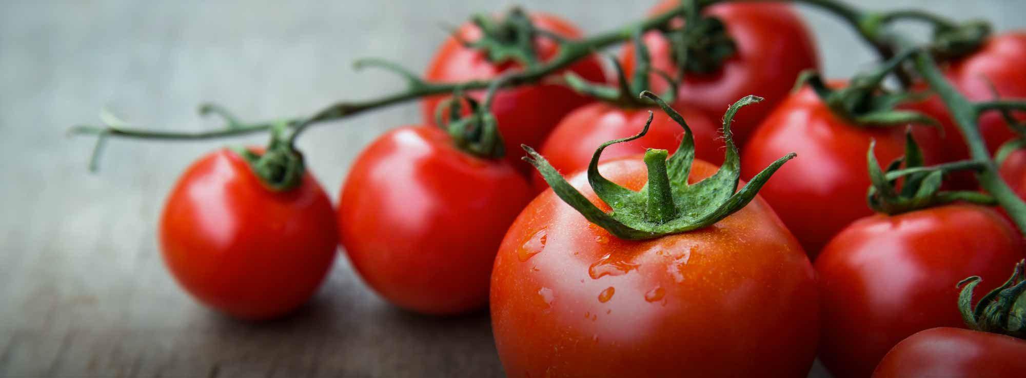 Ricetta: Salsa di pomodoro fatta in casa