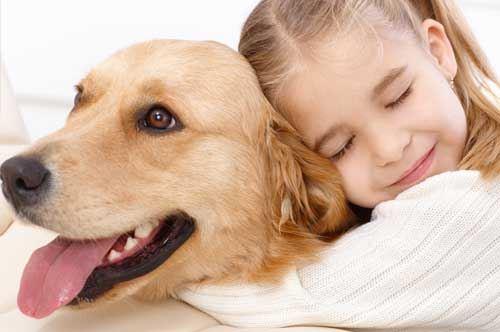 Pet Therapy nelle masserie, il progetto del Gal Gargano