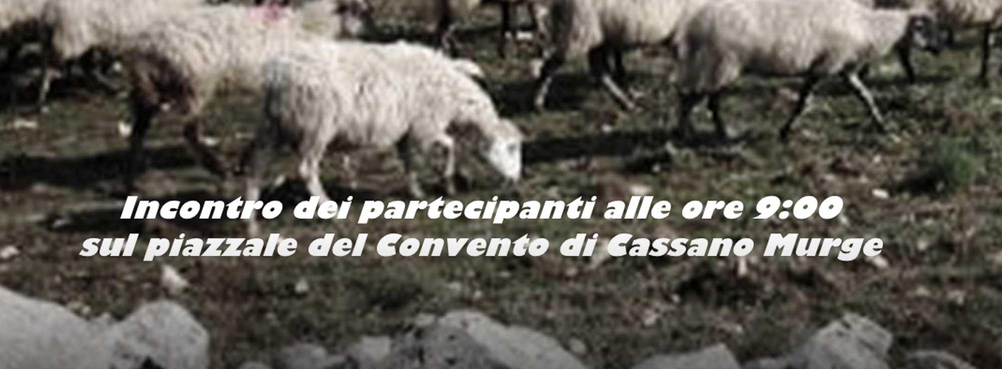 Cassano delle Murge: Le escursioni di Murgia Enjoy