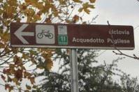 """Viaggi in bici nel 2016, c'è la ciclovia dell'acquedotto pugliese tra i """"must"""""""