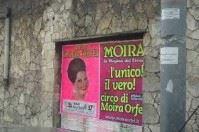 """""""Basta con i circhi in città"""" l'assessore Petruzzelli scatena Bari"""