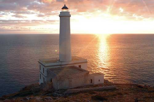 Ornitologi da tutta Italia nel Capo d'Otranto: al via 40 giorni di Campo Studio