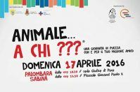 Animale… a Chi???