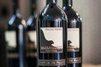 Il miglior vino italiano? Arriva da Novoli