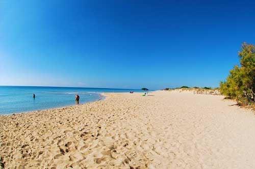 A Lecce ecco l'università in spiaggia