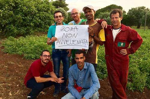 """""""Zona non avvelenata"""", le campagne del Salento si rialzano sui social"""