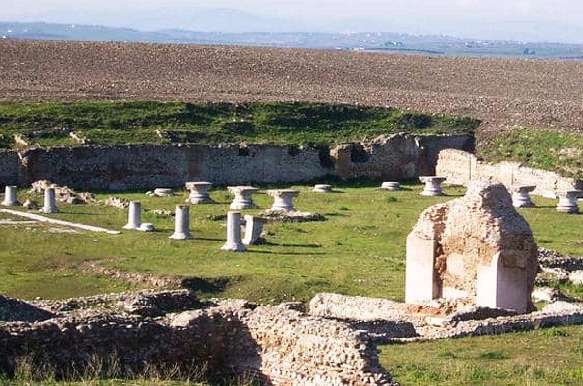 Herdonia, alla scoperta di un'antica città romana