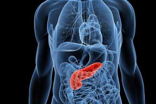 Resistenza alla chemio e tumore al pancreas, le scoperte delle eccellenze di San Giovanni Rotondo
