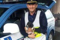 Cane abbandonato sul ciglio della strada, gli agenti della Stradale di Taranto lo adottano