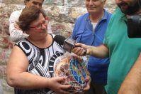 Concorso nazionale dei Quintaloni, ad Andria vince una donna di 116 chili