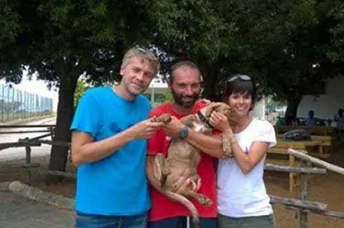 Torre Guaceto, i turisti adottano una cagnolina abbandonata