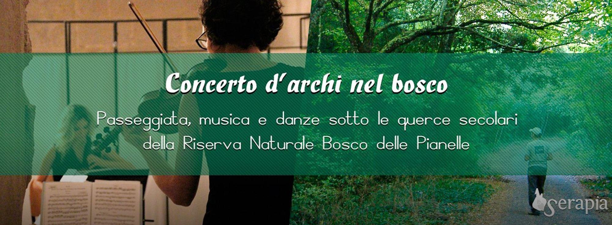 Martina Franca: Concerto d'Archi nel Bosco delle Pianelle