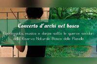 Concerto d'Archi nel Bosco delle Pianelle