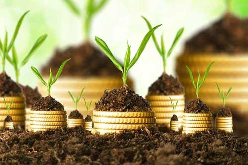 Green economy, Puglia al nono posto in Italia