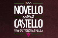 Novello sotto il Castello 2016