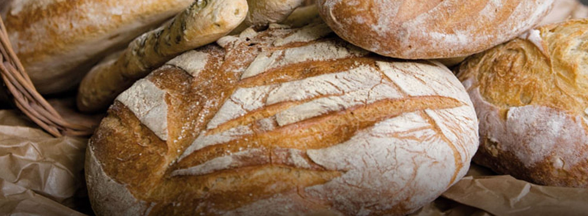 Ricetta: Pane di Altamura