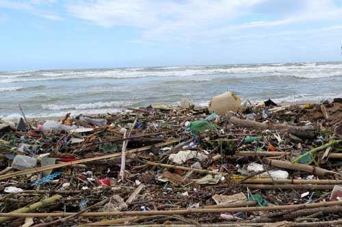 Numero Verde, ecco i reati del mare in Puglia nell'estate 2016