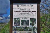 Lecce, ecco la foresta urbana del WWF: le foto