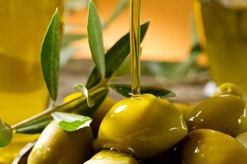 Olio biologico, a Foggia l'isola felice della Puglia