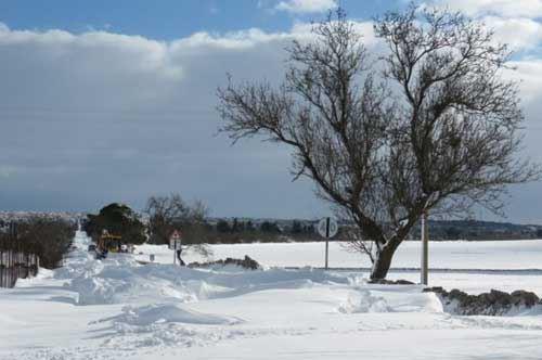 Emergenza-neve, la Puglia chiede 180 milioni di euro al Governo