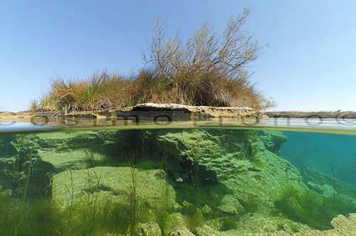 Voglia d'estate, ecco il Salento subacqueo: le foto