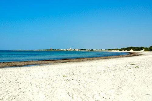 Il mare pugliese conquista l'Inghilterra: c'è Punta Prosciutto sul Telegraph