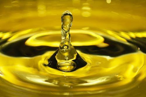 L'olio del Salento conquista New York