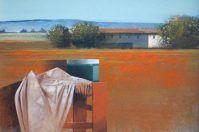 Agostino Cancogni alla Contemporanea Galleria d'Arte