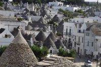Dai Sassi ai Trulli di Alberobello: alla scoperta di borghi, fauna e sapori