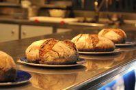 Pane e Futurismo, il via da San Marco in Lamis