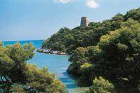 Parchi e verde, il rilancio della Puglia passa anche di qui