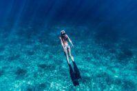 Diving tra Ionio e Adriatico: 10 fondali in cui immergersi in Puglia