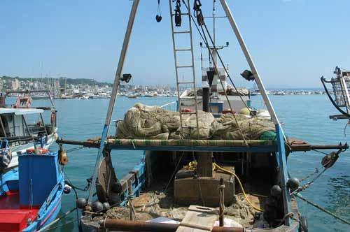 Pubblicati in regione Puglia i primi 3 bandi per pesca ed acquacoltura