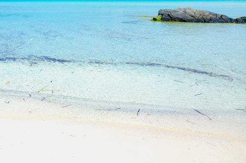 Spiagge bianche in Puglia: le più belle e rinomate della regione