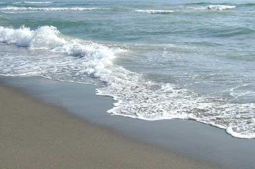Mare pulito nel Nord Barese, l'analisi di Arpa Puglia per la provincia BAT