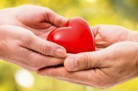 Comune di Trani, molti cittadini scelgono di donare gli organi in città