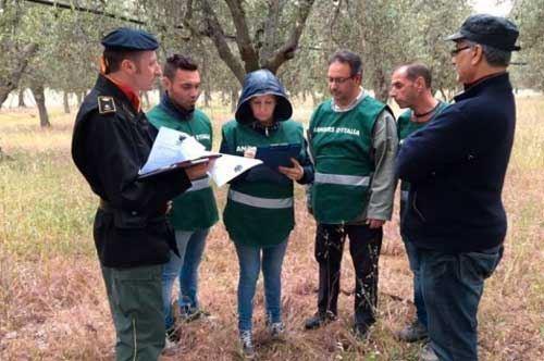 Rangers d'Italia Puglia attivi fino a settembre per reati ambientali