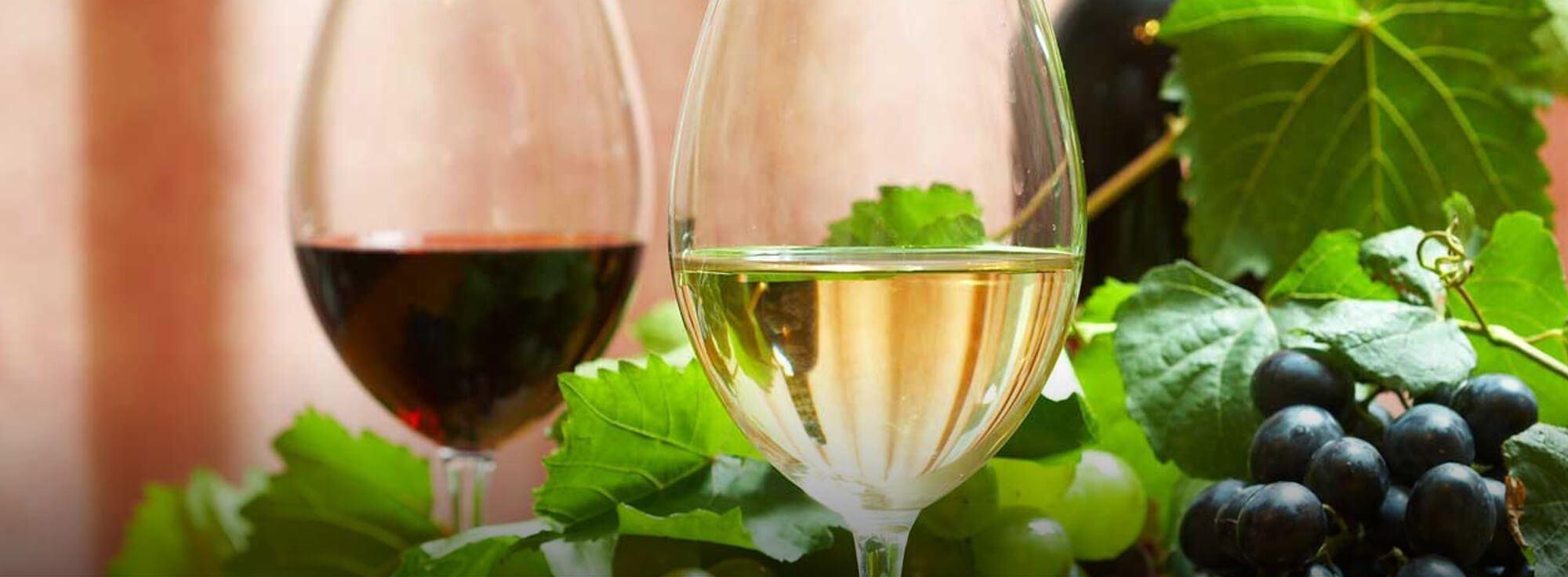 Latiano: Convegno sui Vini Pugliesi - Degustazione