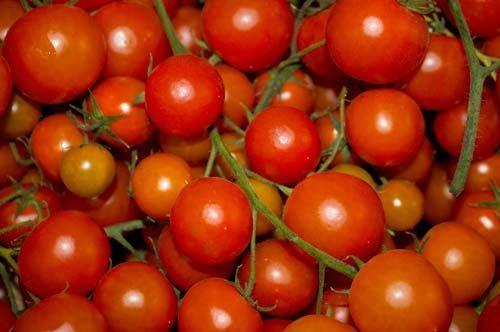 Manduria sceglie il pomodoro per farne presidio slow food, oltre al vino