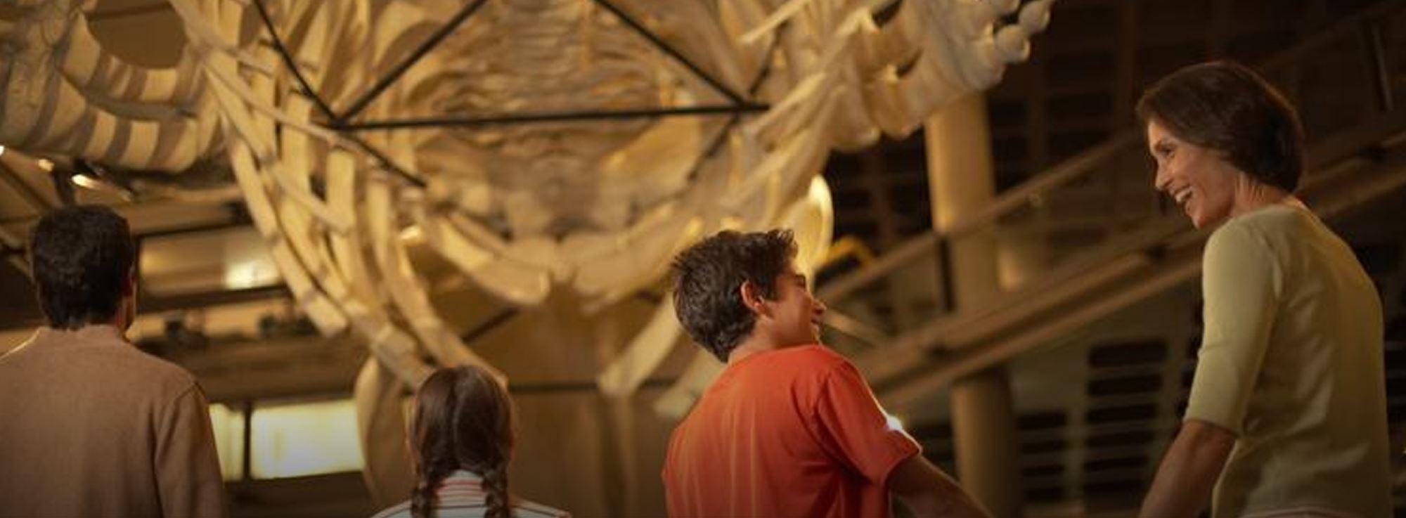 Foggia: Giornata nazionale delle famiglie al Museo