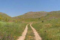 Terra, sassi e fili d'erba, passeggiata letteraria