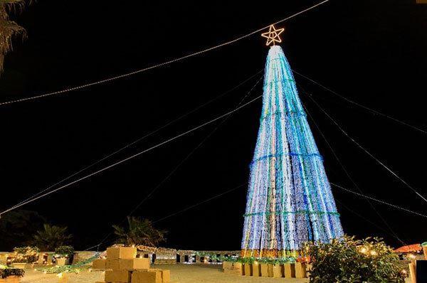 Alberi di Natale più belli di Puglia, la regione addobbata per le feste