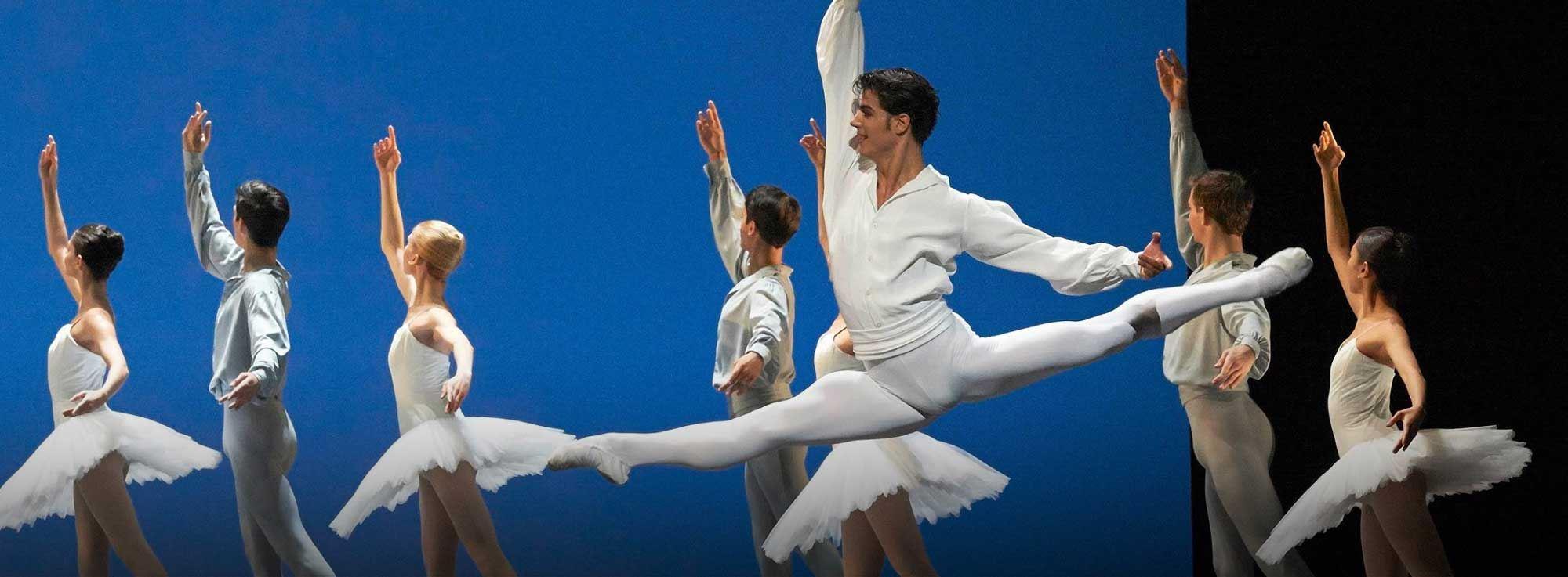 Bari: Il Balletto di Mosca ne Il Lago dei Cigni