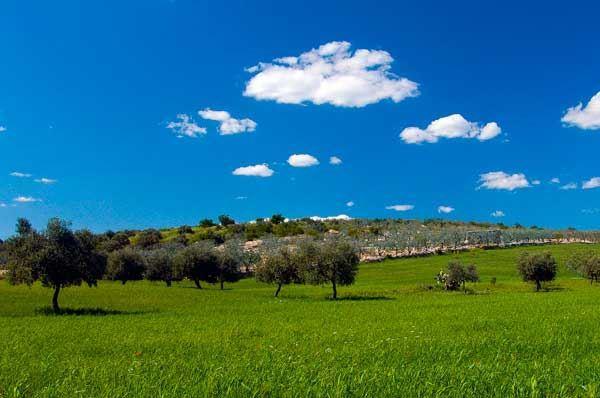 Temperature in aumento nella Puglia, meteo con rischio di leggere piogge