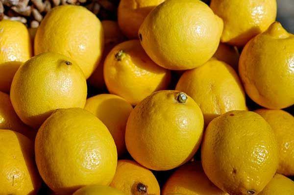 Limone Femminello del Gargano IGP, un agrume tutto pugliese