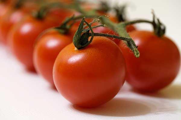 Ottenuto a Lecce il pomodoro bronzeo, ricco di antiossidanti