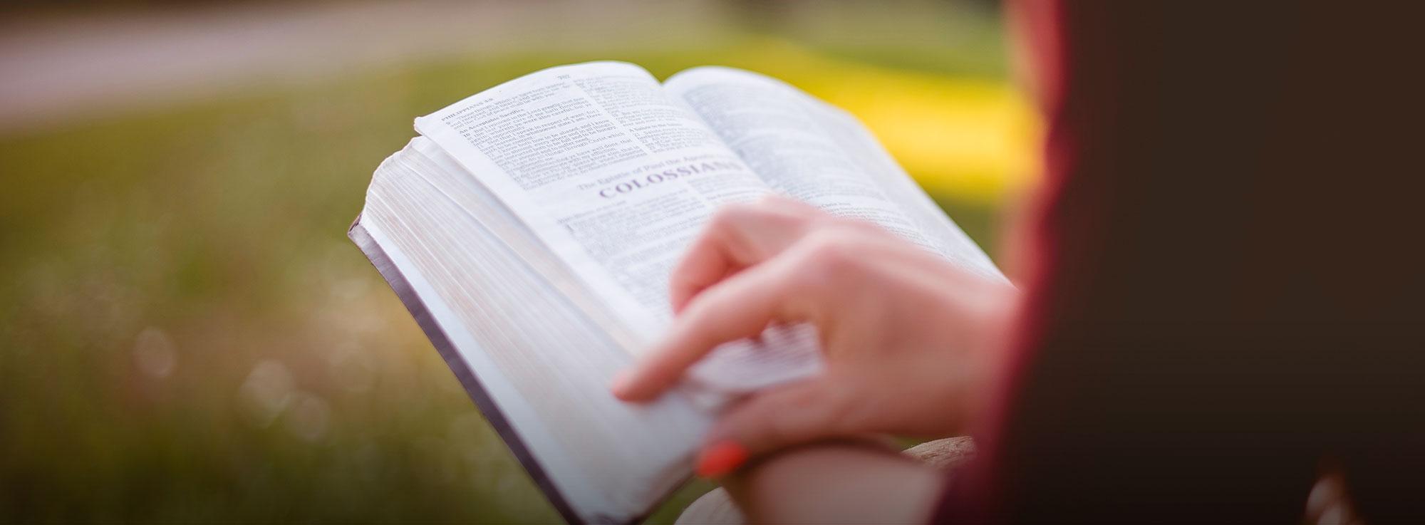 Barletta: Il maggio dei libri