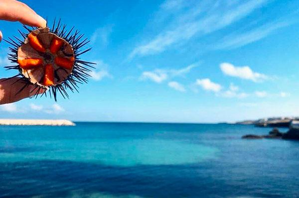 Un weekend in Puglia, tra mare, campi fioriti e sapori deliziosi